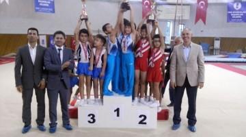 cimnastlig-3-final-2015c