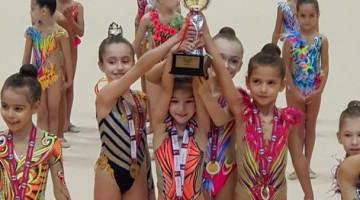 İstanbul Şavkar RİTMİK Cimnastik